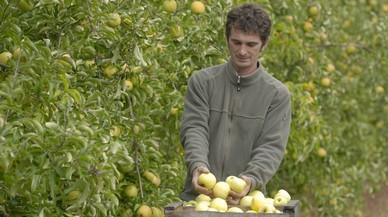 Histoire de Fruits : Luc Rivry